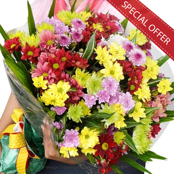 COLOURFUL CHRYSANTHEMUM BOUQUET - Congratulations - in Sri Lanka