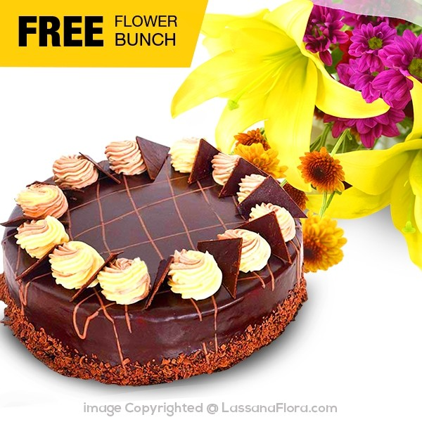 CHOCOLATE CREAMY GATEAU (FREE FLOWER BUNCH) - 1.2kg ( 2.6 lbs ) - Lassana Cakes - in Sri Lanka