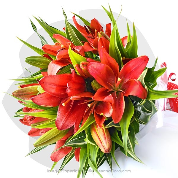JUST FOR YOUR BELOVED - Lovely Lilies - in Sri Lanka