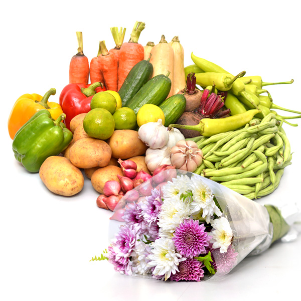 HEALTH & HAPPINESS VEGETABLES & FLOWERS COMBO - Vegetables & Fruits - in Sri Lanka