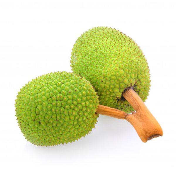 BREADFRUIT (දෙල්) - 01 - Vegetables & Fruits - in Sri Lanka