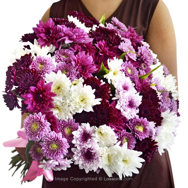 LAVISH WISHES - Exotic Chrysanthemums - in Sri Lanka